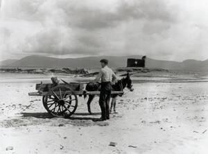 cart on BSK beach